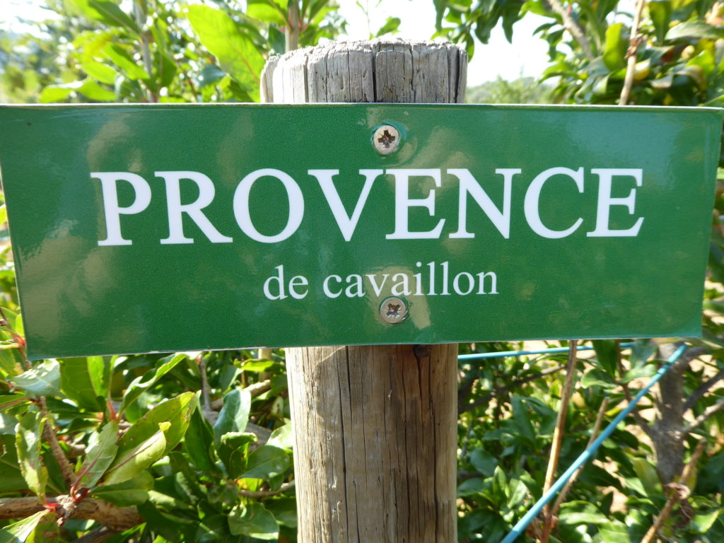 Provence douce